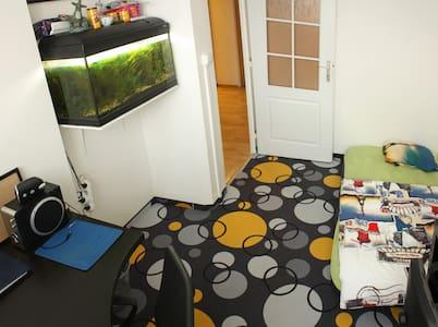 Comfy room with aquarium - 프라하