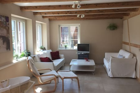 Luxurious flat in country house with garden - Illnau-Effretikon - Apartamento