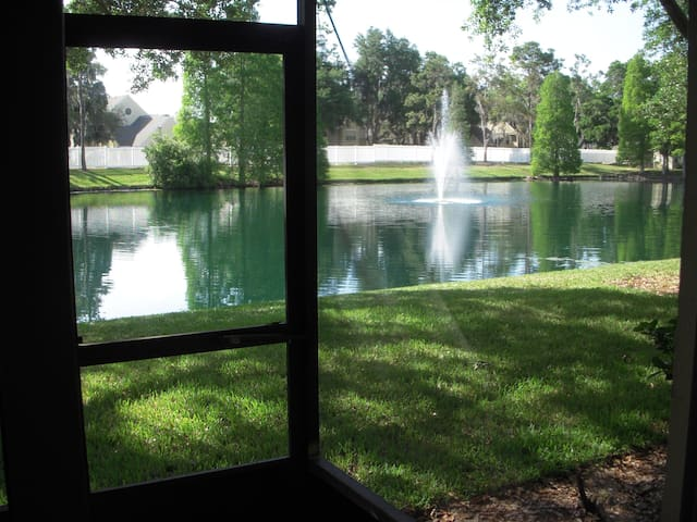 UPDATED POND VIEW - Valrico