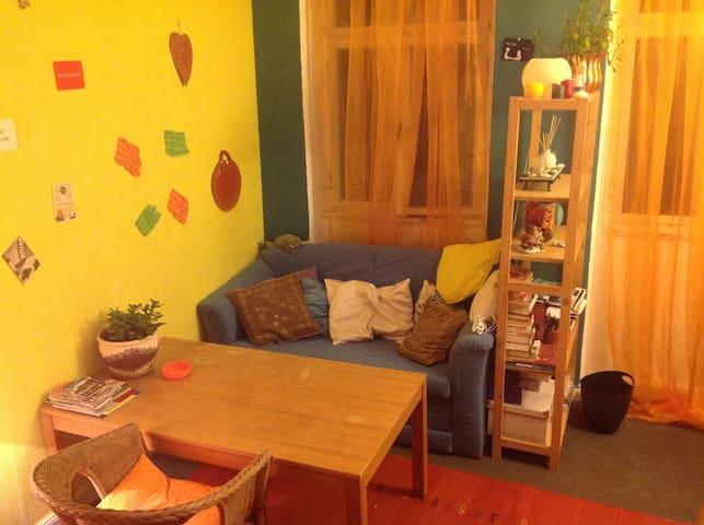 Cosy room in Erlangen city centre - Erlangen - Lägenhet