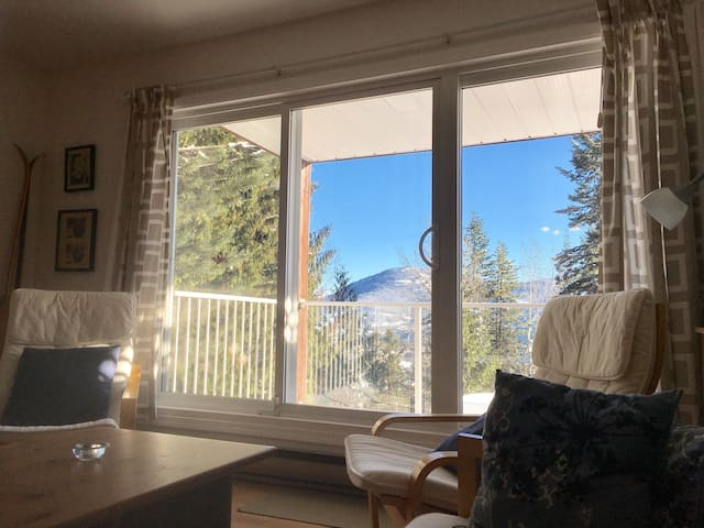 Great location for skiing and fun! - Rossland - Flat