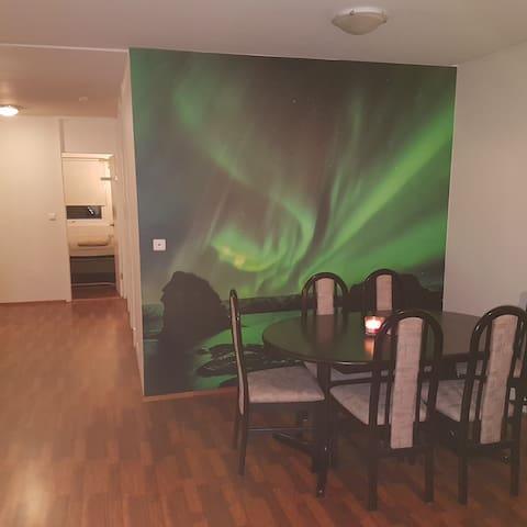 Nice and friendly apartment in Reykjavik - Reykjavik - Leilighet