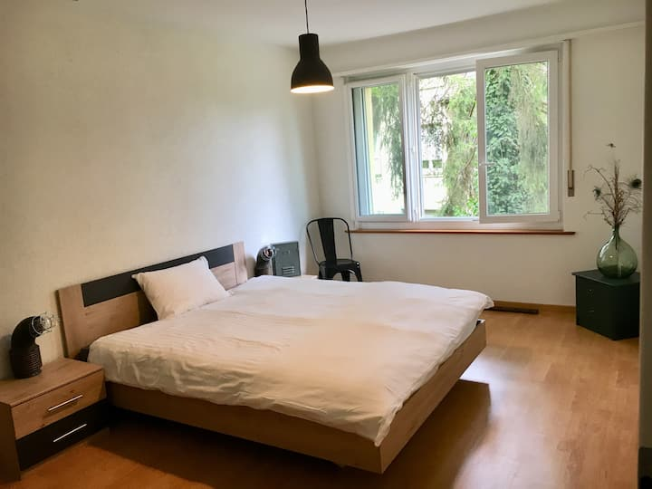 FRI47 Cosy Room in Fribourg City
