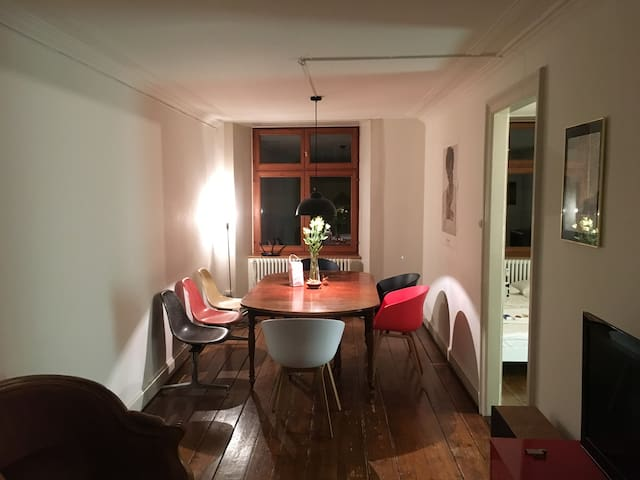 Rooms in Beautiful Apartment in the Heart of Basel - Basel - Apartament