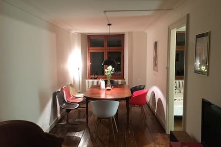 Rooms in Beautiful Apartment in the Heart of Basel - Basel - Huoneisto
