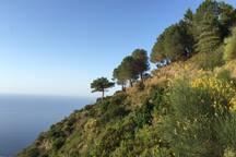 Vue d'une petite balade sur Monte Fossa.