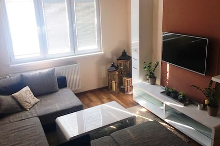 Cosy flat in center, close to everywhere by walk
