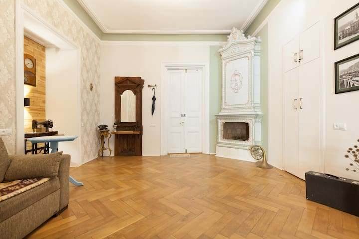 Historical Fireplace Apartment