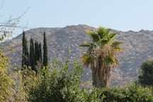 Sunshine Valley, Close Riverside and UCR