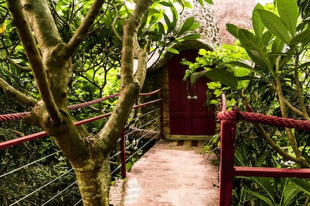 Zen Space Tree House B&B Hanoi City - Hanoi