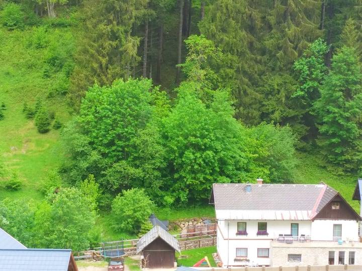 Vila Fortuna, izba Natur Lackenhof