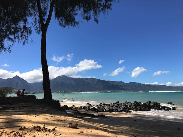 Great central location!! - Kahului