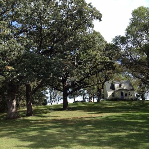 100 year old oak trees all over the property