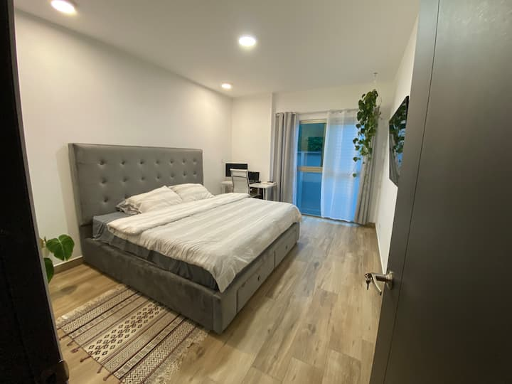 Entire apartment right in the heart of the city