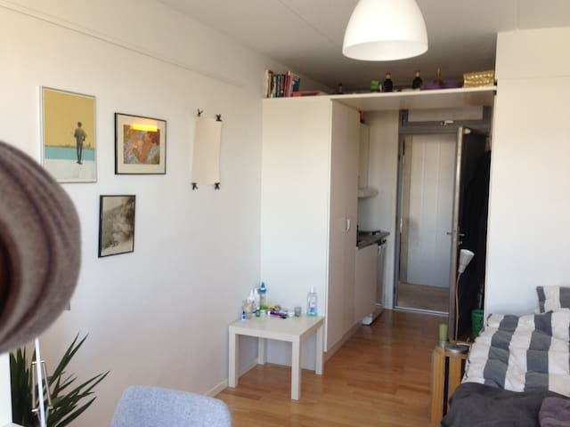 Studio apartment near Nørrebro: reasonably priced - Copenaghen