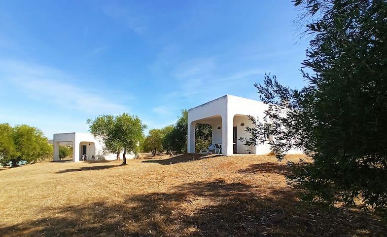 Bungalow Andaluz finca el romeral, vista, piscina