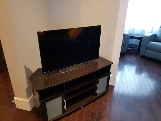 43 inch smart tv (shared space)