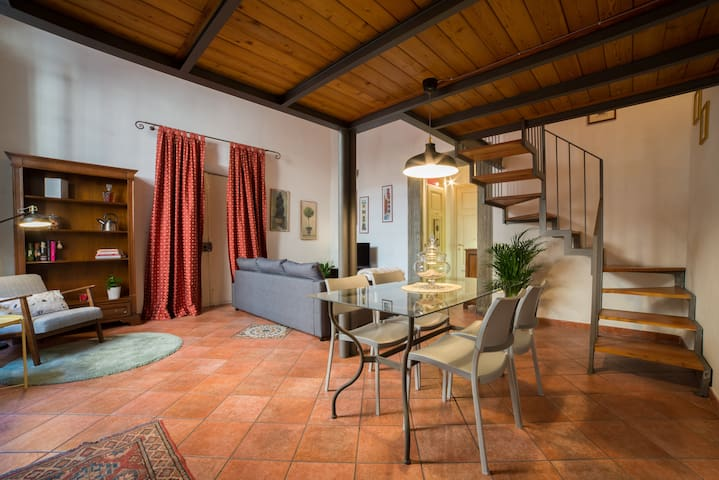 Wide and cozy loft in the hearth of Lucca