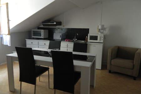 Grand studio aux Eaux-Bonnes près de Gourette - Eaux-Bonnes - Huoneisto