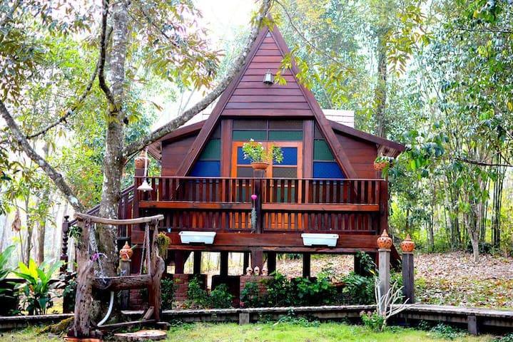 Rabbit Habitat Homestay - Tambon Na Yai Am - Guesthouse