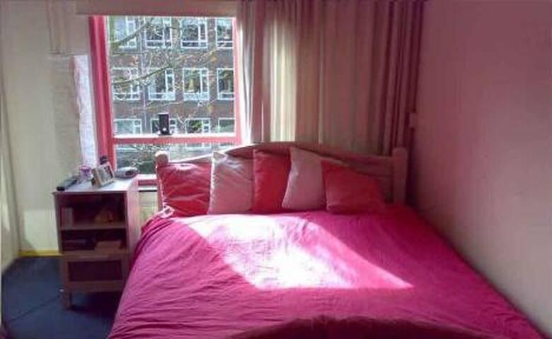 Appartement vlakbij stad en winkelcentrum - Delft - House