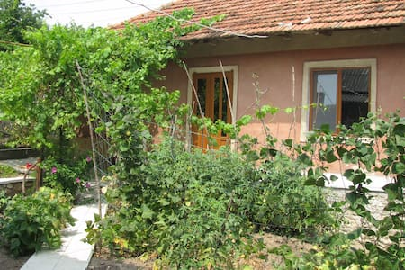 House with garden in center city of Orhei - Orhei