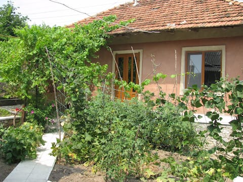 House with garden in center city of Orhei