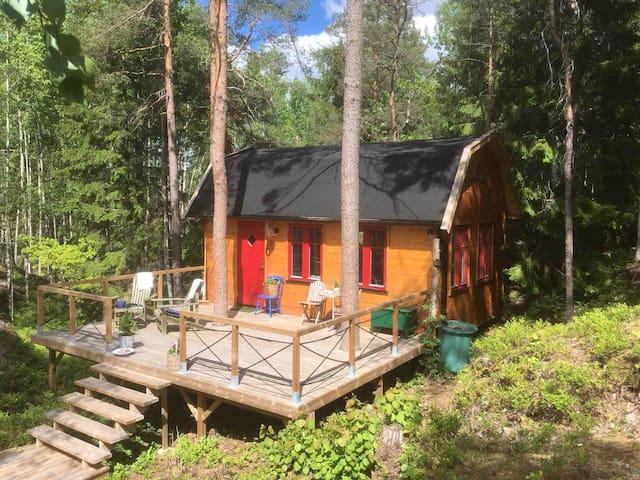 En lugn oas mitt i blåbärsskogen nära en skogssjö