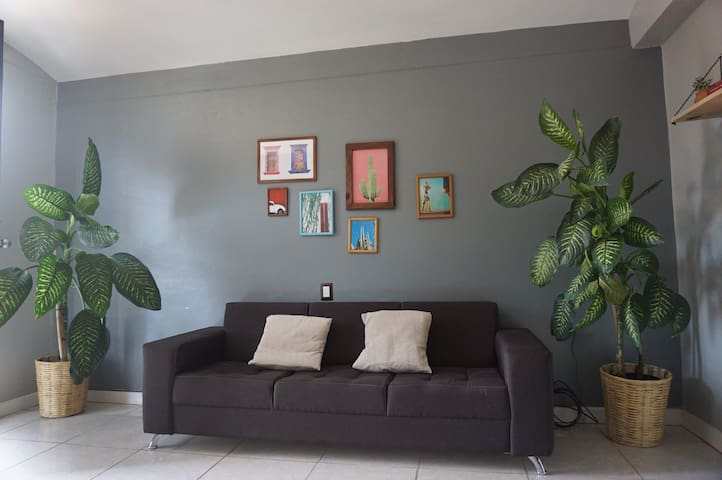 Amazing apartment in Xochimilco, center of Oaxaca.