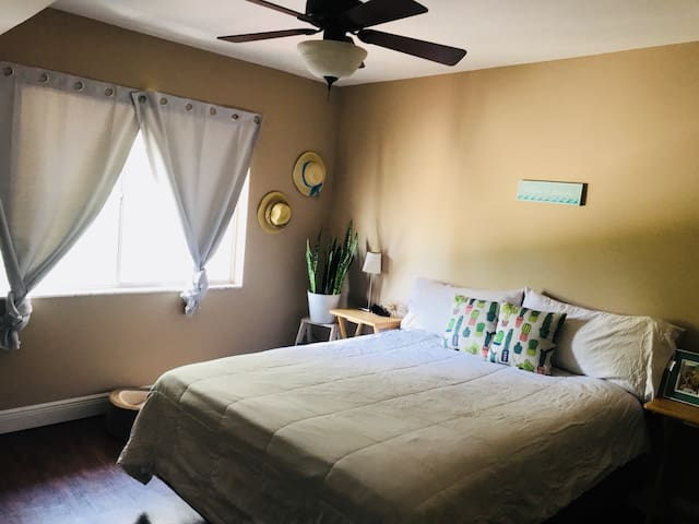 Cozy apartment in Downtown Tampa