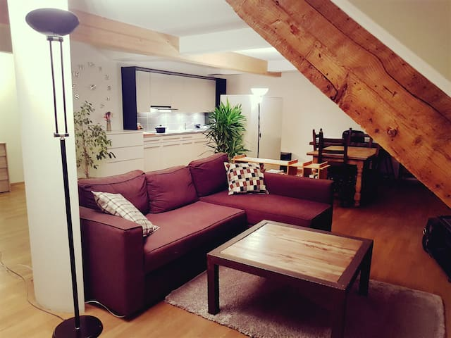 Modern Loft at the hearth of Lausanne - Sub-rental