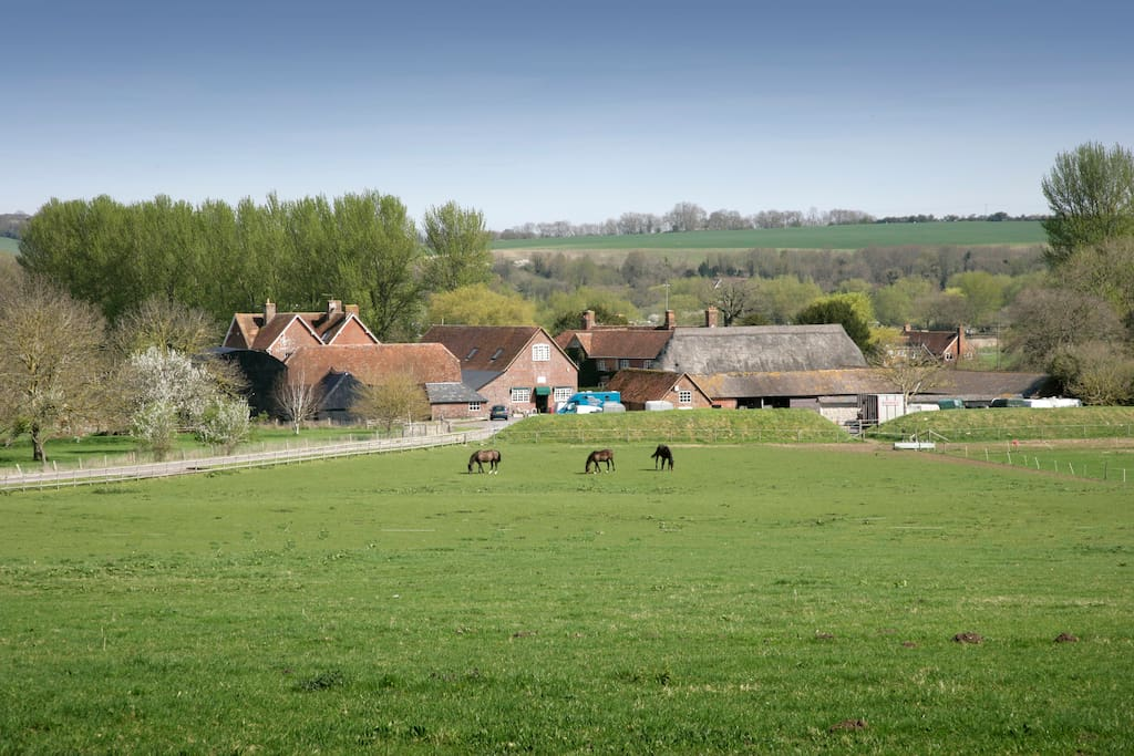 this is our farm where the cottages are