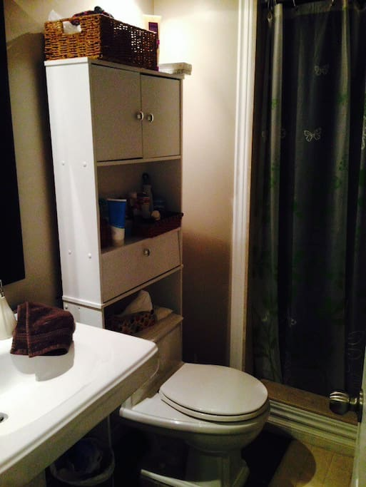 Bathroom with dual shower head