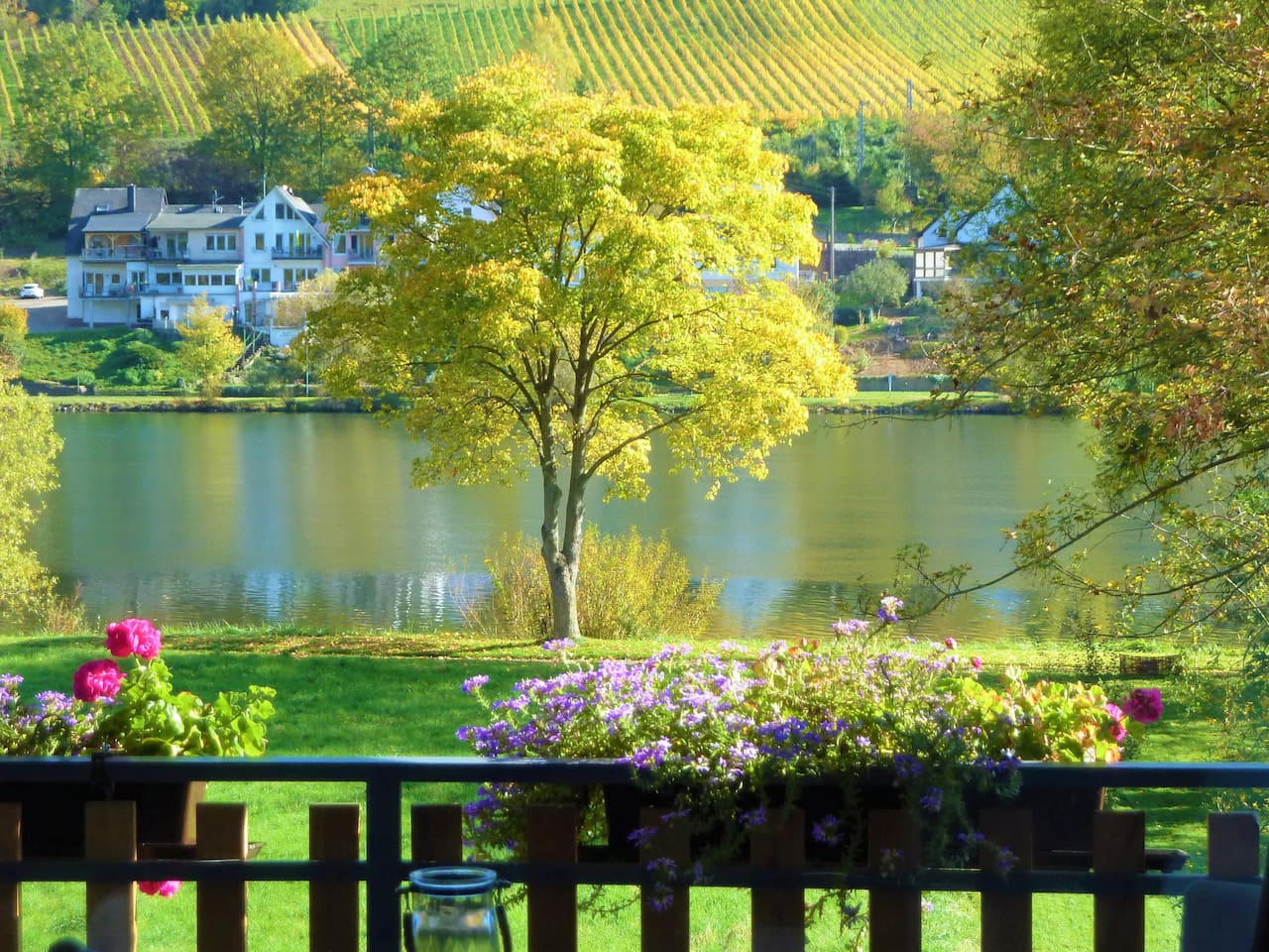 Moselblick aus dem Wohnzimmer  - View from Living Room to Moselle River