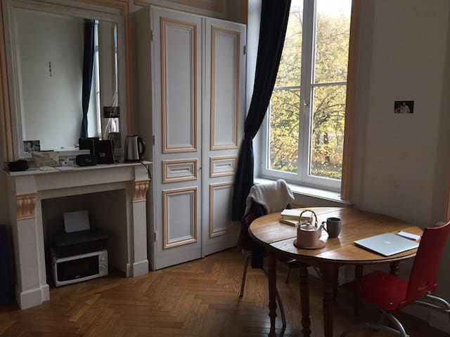 Studio lumineux et agréable dans le Vieux Lille - Lille - Lägenhet