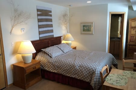 Studio Apartment on Willow Creek - Silverthorne
