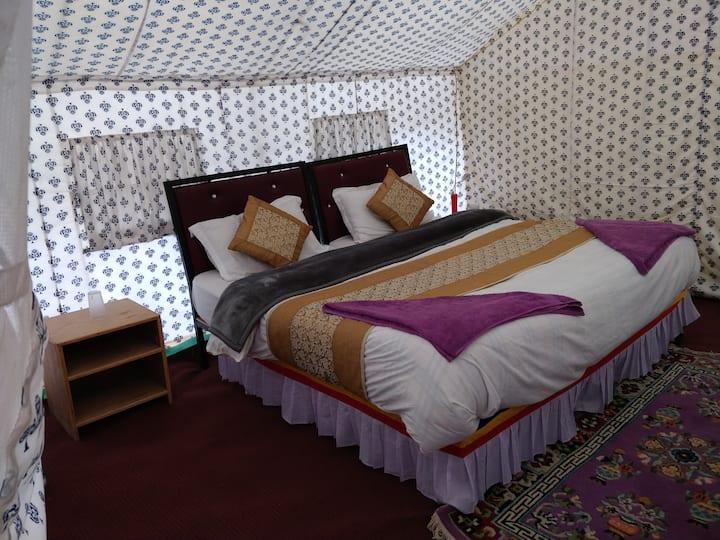 The Regal Camp, Spangmik, Pangong Lake