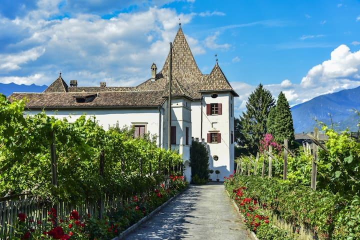 Apartment Castell im Ansitz Schloss Goldegg
