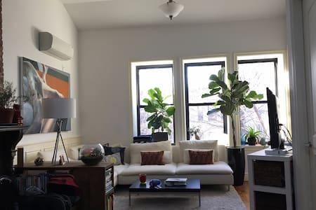 Cute crown heights private bedroom - Brooklyn - Apartment