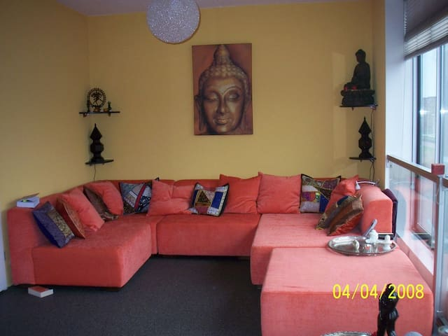 Sunny, warm and luxurious house with sauna - IJsselstein - House