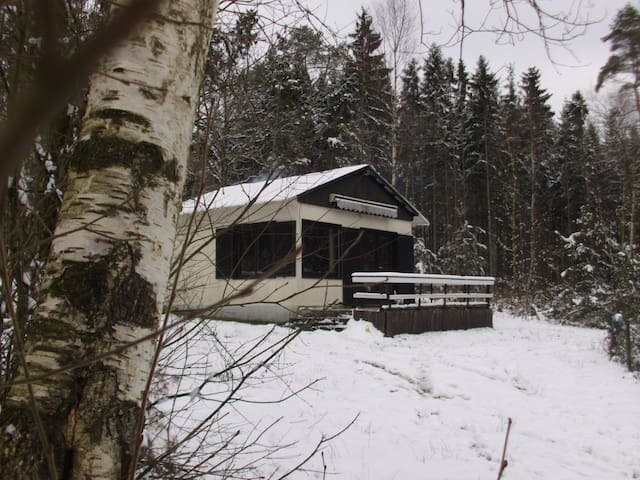 Ma cabane au coeur de la forêt