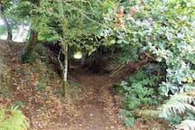 Lane from garden towards forest