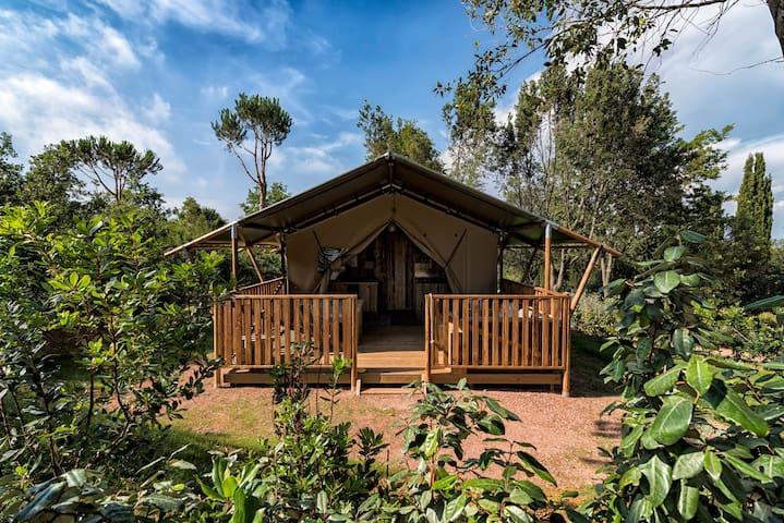 Eco-lodge di charme sul golfo di Baratti - Stazione di Populonia - Tent