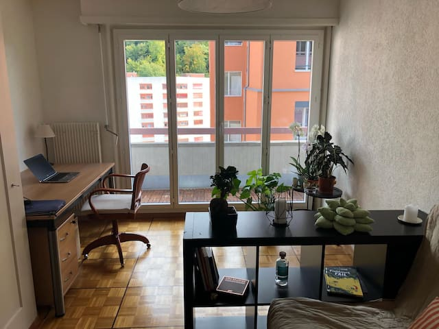 Nice apartment in the heart of Lausanne, long term