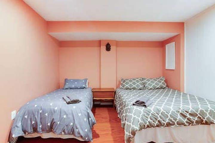 Bedroom 8 Standard-sized bedroom in the basement  1 queen and 1 single beds