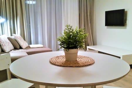Palanga Center Apartment No.1