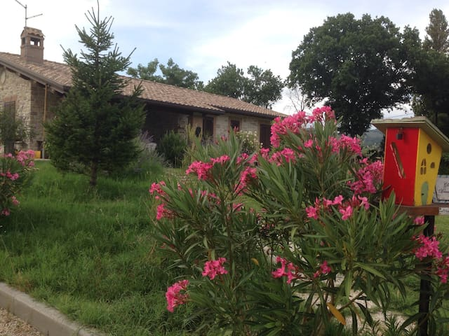 Foresteria Dionigi Nidodegliamanti - Asís - Casa
