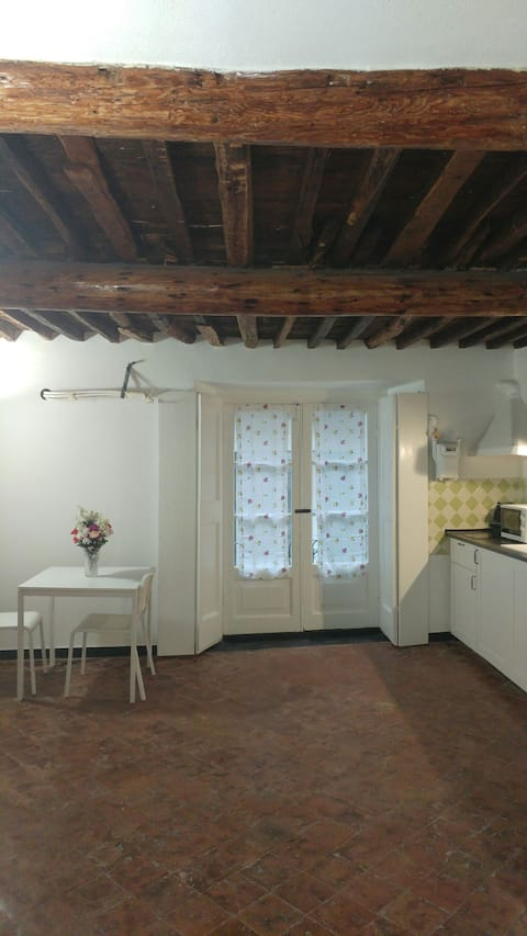 Two-room apartment in the old town, opposite Aquarius