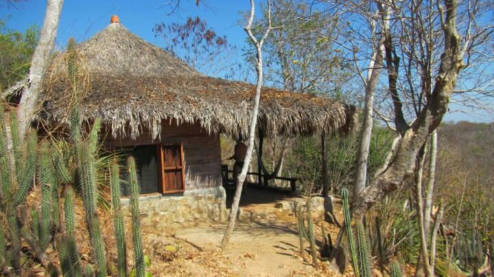 Macondo-Casitas encantadoras en Mazunte- Rebeca
