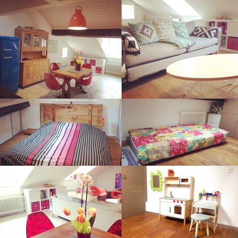 Appartement rénové en vieille-ville sous comble - Fribourg